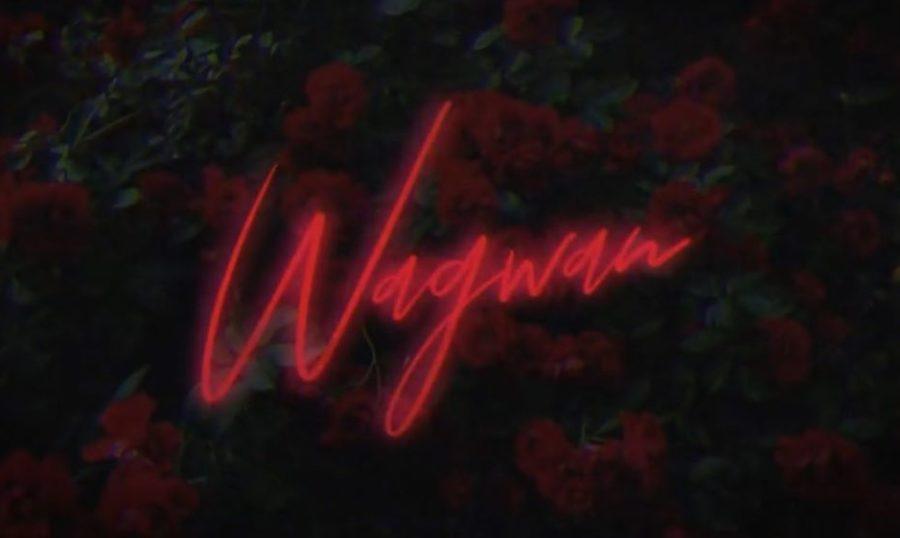 KM , Kater Karma - Wagwan